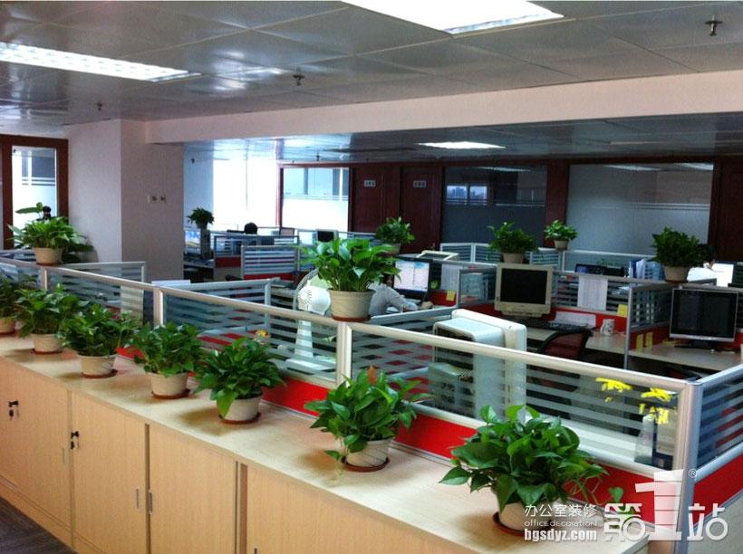 广州麦粟办公室装修办公区实景图50平方长方形的户型怎么