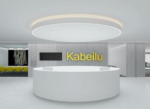 广州办公室设计|卡贝路贸易公司设计案例